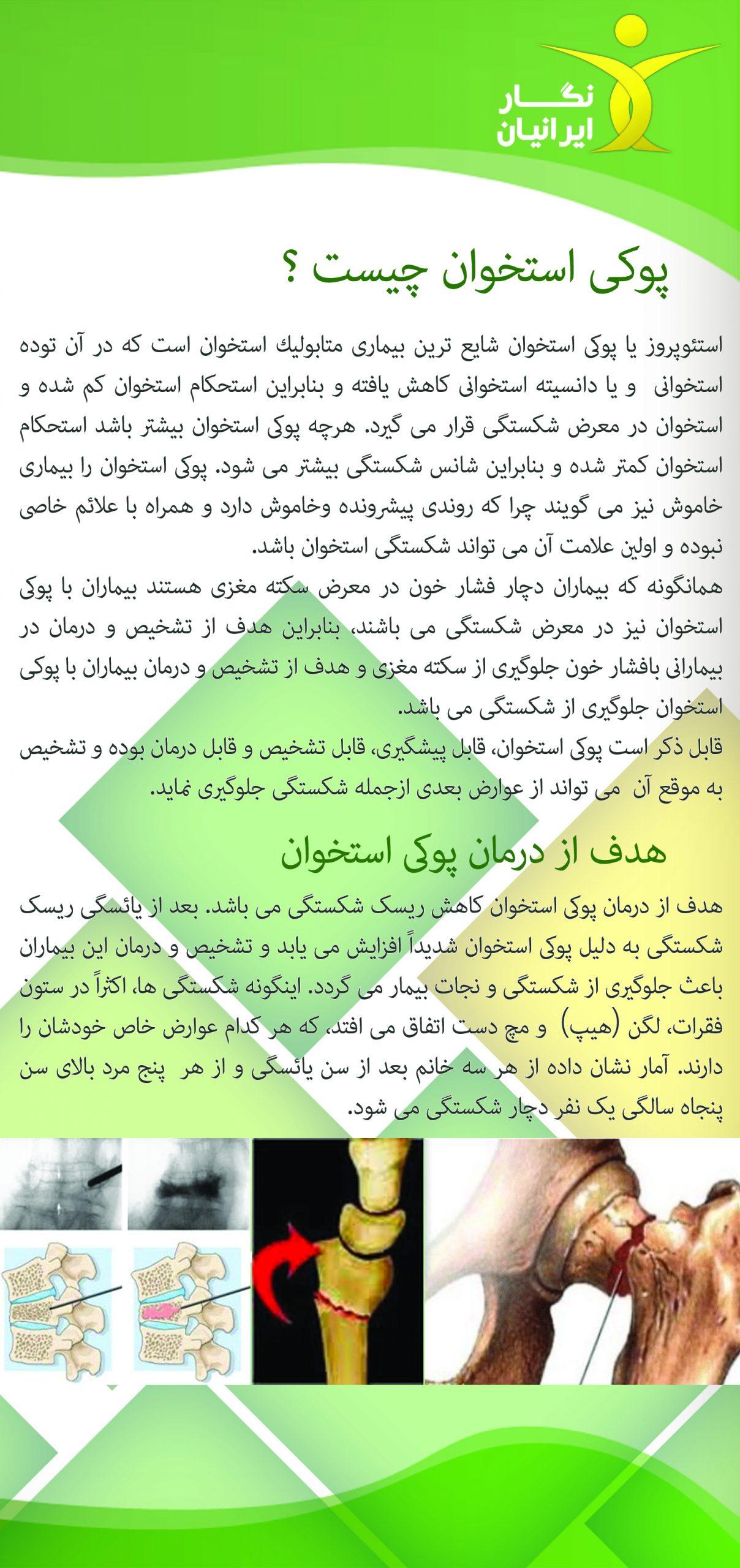 نگار ایرانیان