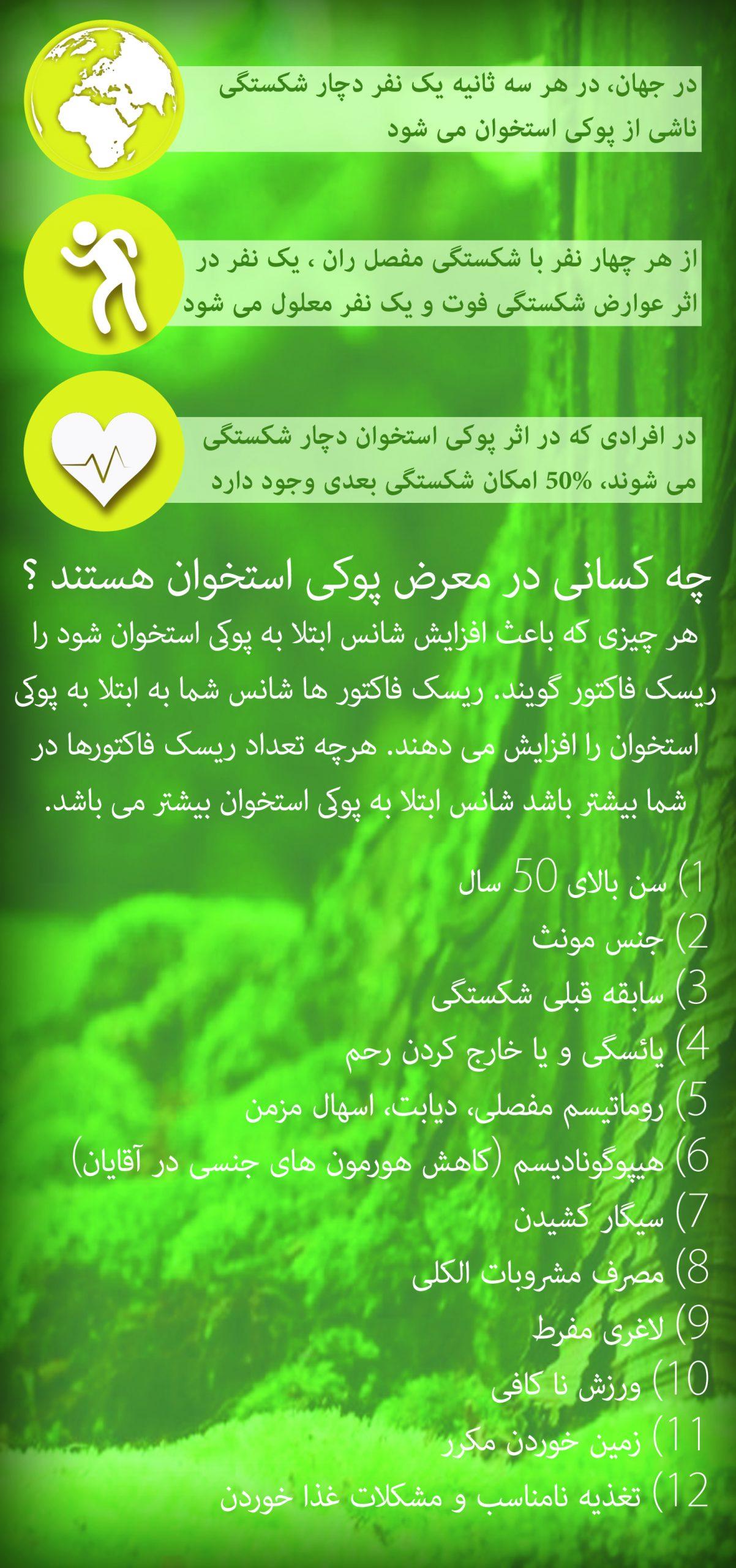 نگار ایرانیان2